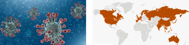 estadisticas coronavirus